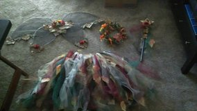 Hand Made Fairy Costume in Tinley Park, Illinois