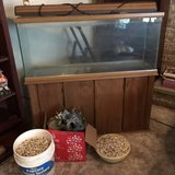 Aquarium with cabinets in Fort Polk, Louisiana