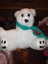 Girl Scout bears in The Woodlands, Texas