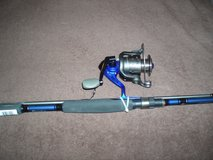 Quantum Fishing Pole and Reel in Naperville, Illinois