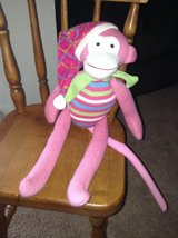Cute Pink Monkey in Westmont, Illinois