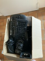 Box of computer speakers, cables, and keyboards in Stuttgart, GE