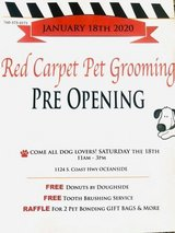 NEW Pet Salon OPENING *Dogs in Camp Pendleton, California