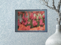 Large Tulip Picture in Ramstein, Germany