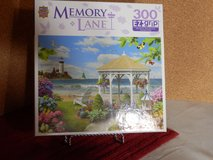 300 piece EZ Grip puzzle in Joliet, Illinois