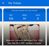 Miranda Lambert Golden 1 in Travis AFB, California