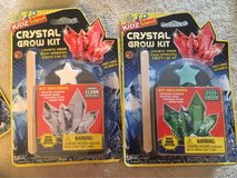 Crystal Grow Kits in Chicago, Illinois