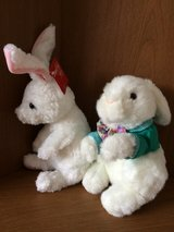 Easter - Spring Plush Rabbits in Sandwich, Illinois