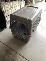 Kennel ( Dog Kennel) in Tacoma, Washington