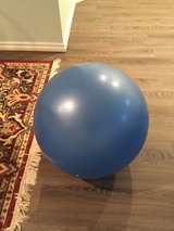 NordicTrack Exercise Ball in Naperville, Illinois