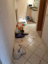 TRASH & PCSING CLEANING..PICK UP & DELIVERY SERVICES. PAINTING  &  MANY MORE. in Ramstein, Germany