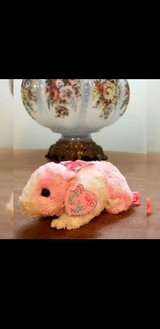 Ty Beanie Babies PinkyS Collection Rosa the Guinea Pig in Elizabethtown, Kentucky