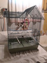 Canary/Finch cage in Aurora, Illinois
