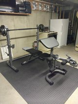 Olympic Weight Bench With Weights in Naperville, Illinois