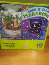 Grow n glow Terrarium - New in Yorkville, Illinois