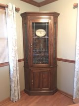 Lighted Corner Cabinet in Naperville, Illinois