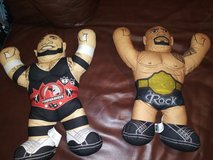 Wrestling pillow buddies in The Woodlands, Texas