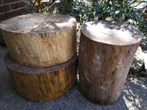 Tree Stumps for Tables in Conroe, Texas