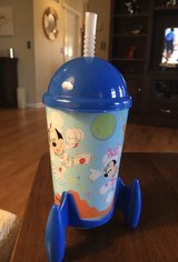 Disney Parks Rocket Cup in Naperville, Illinois