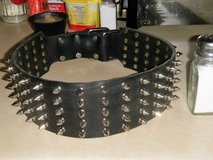 Large black leather spiked dog collar in Tinker AFB, Oklahoma