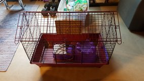 Guinea Pig Cage and Accessories in St. Charles, Illinois