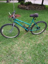 """""""For a few rides with family"""" bike - bicycle in Kingwood, Texas"""