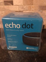 Echo Dot in Chicago, Illinois