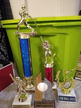 Baseball trophies in Aurora, Illinois