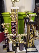 Cub Scout Pinewood Derby Trophies in Aurora, Illinois