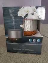 Chesapeake Bay Essential Oil Diffuser in Chicago, Illinois