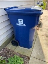 Naperville - Largest 96gal Recycling Container in Naperville, Illinois