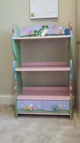 Girls book shelf in Naperville, Illinois