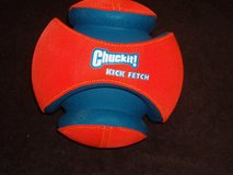 Kick-it Fetch-it Ball, Large size in Chicago, Illinois