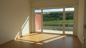Beautiful loft 2BR Böblingen, 10 min Panzer, 15 min Patch, Fantastic view! in Stuttgart, GE