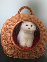 TOY KIDS Wicker Pet Carrier in Naperville, Illinois