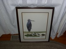 Little Blue Heron - by Ray Harm in Fort Knox, Kentucky