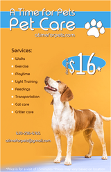 Dog Walker in Plainfield, Illinois