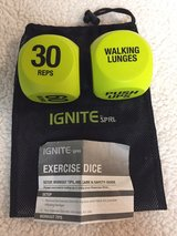 Exercise Dice in Chicago, Illinois