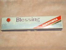 Blessing Harmonica in Plainfield, Illinois