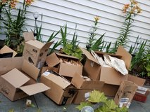 Moving or storage boxes with packaging material. in Naperville, Illinois