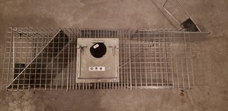Havahart Critter Cage with Timer in Camp Lejeune, North Carolina