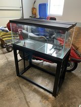 40 gallon breeder tank with metal stand in Chicago, Illinois