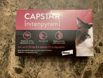 Capstar for Cats in Beaufort, South Carolina
