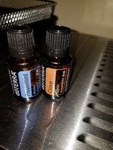DOTERRA Peppermint and Clove in Clarksville, Tennessee