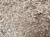 Finely mulched pistachio wood in Alamogordo, New Mexico