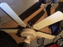 Large 5 blade  tan fan in Chicago, Illinois