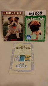 Junior Great Books - Penderwicks - Puppy - The Dog in Naperville, Illinois