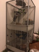 Last chance! 2 tiered cage in Ramstein, Germany
