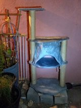 Karlie Cat Tree in Yucca Valley, California