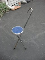 TAKE A SEAT WITH YOU  ( FOLDING STOOL) in Naperville, Illinois